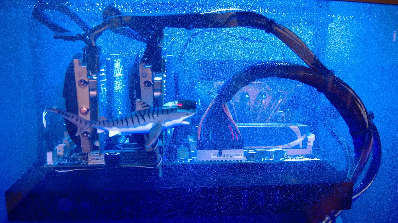 マイニングの熱で海水魚飼育
